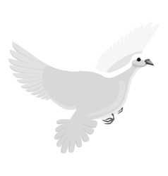 White pigeon icon gray monochrome style vector image