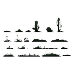 Black silhouettes of cactus on a white background vector image