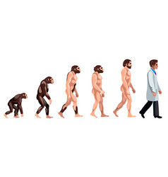 Evolution of a doctor vector