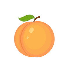 Guicy peach fruit whit green leaf vector
