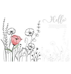 Hand drawn poppy blossom with black line vector