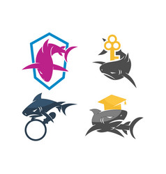 shark key education magnify logo design set vector image