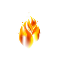 fire flame over white vector image
