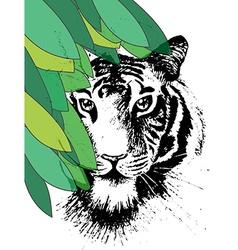 Tiger under leafes in vector image