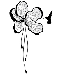 apple flower and hummingbird vector image vector image