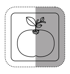 Fresh orange vegetable vector image