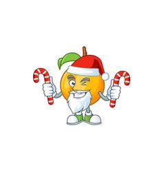santa with candy seeds nutmeg cartoon on white vector image