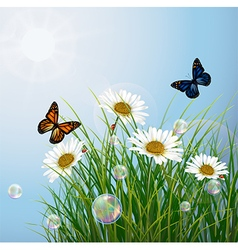 Tropical background with butterflies and flowers vector image