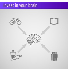 invest in your brain Infographic elements for web vector image vector image