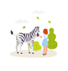 cute girl contacting with the zebra colorful vector image