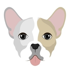 Dog cartoon face vector
