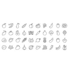 Fruit berry vegetable food line icon set vector