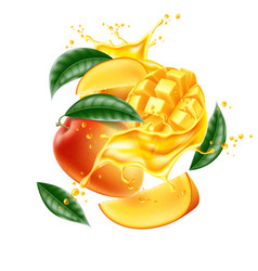 realistic mango leaf slice juice splash vector image