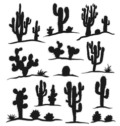 Set of cactuses isolated on white vector image