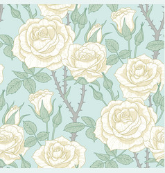 white roses pattern vector image