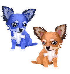 lovely foxes of different colors blue and brown vector image vector image