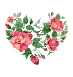 Floral abstract heart of roses vector image