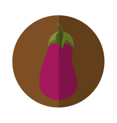 Beet fresh vegetable isolated icon vector