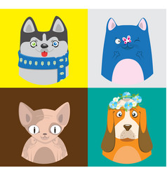 Colorful cartoon cats and dogs collection vector