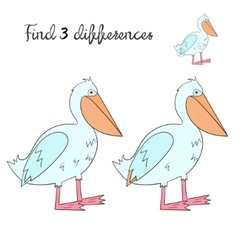 Find differences kids layout for game pelican vector