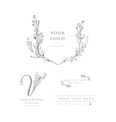pre-made logo branding kit floral monogram vector image
