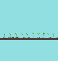 Seedlings field growing young plant agricultural vector