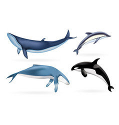 whale icons set realistic style vector image