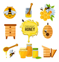 colorful pictures of honey bumble and different vector image vector image