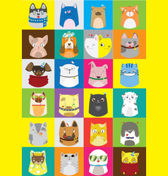 cute dogs and cats set pattern of pets vector image vector image