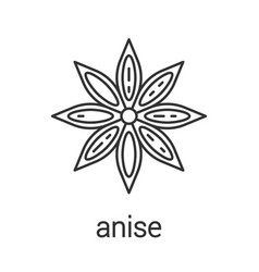 Anise linear icon vector