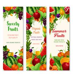 Banners set of fresh summer fruits vector