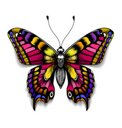 Beautiful tattoo butterfly colorful machaon vector