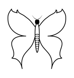 Butterfly cartoon icon image vector