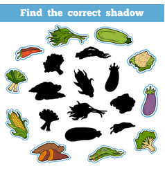 Find correct shadow thai vegetables vector