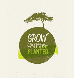 Grow where you are planted motivation quote on vector