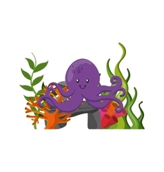 Octupus icon Sea life design graphic vector image