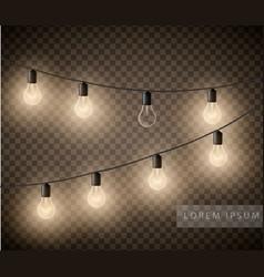 set of light bulbs garlands on transparent vector image