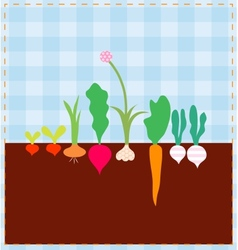 Vegetable bed vector