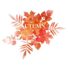 autumn orange leaves imitation of watercolors vector image
