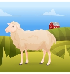 Realisic cute sheep standing on the gras with farm vector image