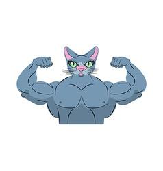 Strong cat Power animal bodybuilder Pet with big vector image