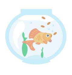 golden fish in the aquarium vector image vector image