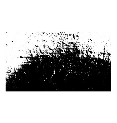 grunge black and white texture vector image vector image