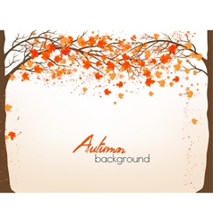 Autumn background with a tree and colorful leaves vector