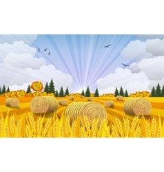 Countryside landscape with haystacks on fields vector