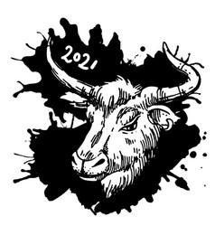 head bull hand drawn beautiful vector image
