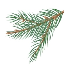 Pine tree branches with cones christmas decoration vector