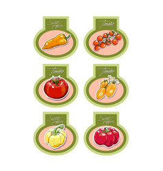 Set of labels with vegetables vector