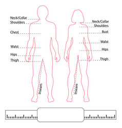 man woman contour bodies pointers and body parts vector image vector image