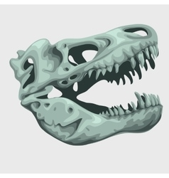 Fossilized head of a giant animal vector